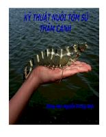 Tài liệu Bài giảng Kỹ thuật nuôi thâm canh tôm sú.ppt