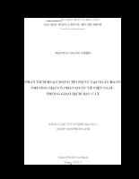PHÂN TÍCH HOẠT ĐỘNG TÍN DỤNG TẠI NGÂN HÀNG TMCP QUỐC TẾ VIỆT NAM – PGD BÀU CÁT VIB.docx