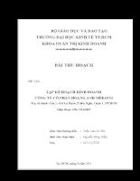 Lập kế hoạch kinh doanh công ty cổ phần hoàng anh mêkong.doc