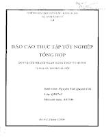 Báo cáo thực tập tại chi nhánh Ngân hàng TMCP Hàng Hải - Hai Bà Trưng Hà Nội.PDF