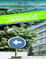 Cam kết WTO về nhóm Doanh nghiệp thương mại, Doanh nghiệp nhà nước.pdf
