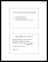 Kỹ thuật nuôi cá chem.pdf