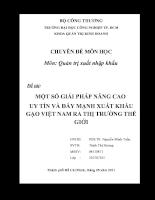 Một số giải pháp nâng cao uy tín và đẩy mạnh xuất khẩu gạo Việt Nam ra thị trường thế giới (2009 toi nay).doc