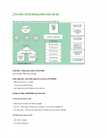 Tìm hiểu về hệ thống kiểm soát nội bộ.docx