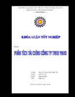 Phân tích tài chính công ty TNHH YAHO.doc