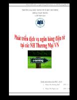 Phat trien dich vu Ngan hang Dien tu (3).doc
