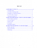 Lựa chọn một công ty thương mại (có thể đang niêm yết trên thị trường chứng khoán), phân tích môi trường vĩ mô của doanh nghiệp (PEST) và phân tích thị trường của doanh nghiệp.DOC