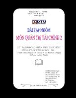 báo cáo Phân tích tài chính Công ty cổ phần cao su đà nẵng - ĐH Duy tân.pdf