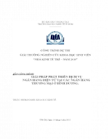 GIẢI PHÁP PHÁT TRIỂN DỊCH VỤ NGÂN HÀNG ĐIỆN TỬ TẠI CÁC NGÂN HÀNG Thương mại.doc