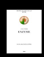 Giáo trình Enzyme