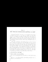Tài liệu Kỹ thuật nuôi cá Mú phần 3.pdf