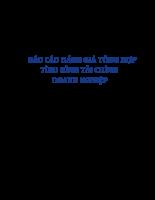 BÁO CÁO ĐÁNH GIÁ TỔNG HỢP TÌNH HÌNH TÀI CHÍNH DOANH NGHIỆP Công ty cổ phần Chế biến Thủy sản Xuất khẩu Ngô Quyền.doc