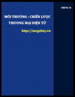 Phân tích chiến lược thương mại điện tử của Megabuy.vn.pdf