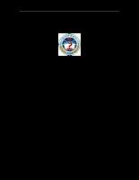 Phát triển thị trường tiêu thụ sản phẩm của Công ty May Việt Tiến.DOC