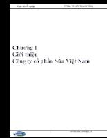 Giới thiệu Công ty cổ phần Sữa Việt Nam.doc