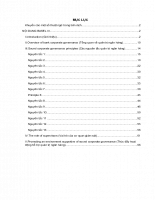 Tổng hợp Basel, Song ngữ Anh - Việt