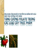 Ứng dụng công nghệ di truyền tạo giống chất dinh dưỡng chức năng: Tăng cường FOLATE trong các loại cây TP