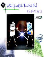 slide giới thiệu các bộ vi sử lý của intel và AMD