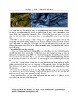 Tài liệu kĩ thuật chăn nuôi rắn mối