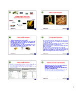 Công nghệ ENZYME ENZYME TECHNOLOGY