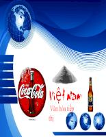 Nghiên cứu thành công Coca và thất bại Foster tại Việt Nam.