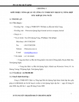 Kế toán tổng hợp tại công ty tnhh mtv dịch vụ tổng hợp dầu khí quảng ngãi.doc
