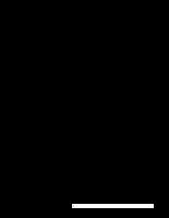 Hoạt động sản xuất kinh doanh của Công ty sản xuất - xuất nhập khẩu dệt may VINATEXIMEX.docx