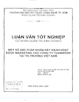 Một số giải pháp nhằm đẩy mạnh hoạt động marketing cho công ty Teamwork tại thị trường Việt Nam