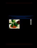 Phát triển sản phẩm trà xanh gừng