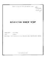 Báo cáo thực tập tại Chi Nhánh Ngân Hàng Công Thương Bắc Giang.PDF