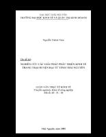 Nghiên cứu các giải pháp phát triển kinh tế trang trại huyện Đại Từ - Thái Nguyên đến năm 2010.pdf