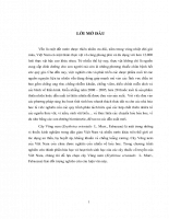 Nghiên cứu thành phần hóa học và hoạt tính sinh học của cây Vông nem