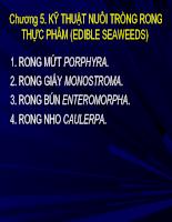 Chương 5 - Kỹ thuật trồng rong biển