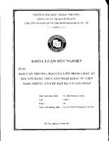 Rào cản thương mại của liên minh châu Âu đối với hàng thủy sản nhập khẩu từ Việt Nam. Những vấn đề đặt ra và giải pháp.pdf