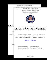 Hoàn thiện các dịch vụ hỗ trợ thương mại điện tử trên website Www.vtic.vn.doc