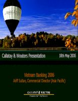 Vietnam Banking 2006