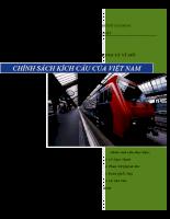 Tiểu luận Chính sách kích cầu.pdf