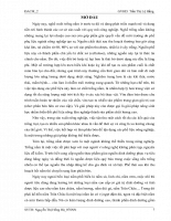 kỹ thuật nuôi trồng nấm Trân Châu Agrocybe aegerital