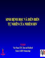 Bài giảng: Sinh bệnh học và diễn biến tự nhiên của nhiễm hiv