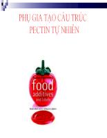Phụ gia thực phẩm: Phụ gia tạo cấu trúc Pectin tự nhiên (dạng file ppt báo cáo)