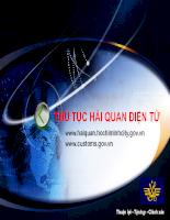 Thủ tục hải quan điện tử - bài giảng