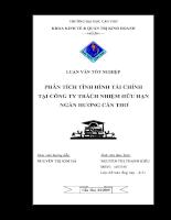 Phân tích tình hình tài chính tại công ty trách nhiệm hữu hạn Ngàn Hương - Cân Thơ.pdf