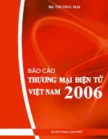 Báo cáo thương mại điện tử của việt nam năm 2006