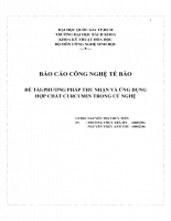Phương pháp thu nhận và ứng dụng hợp chất curcumin trong củ nghệ