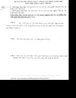 Đề thi công chức thuế - Kiến thức chung 2