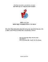 Hoạt động phân đoạn thị trường, lựa chọn thị trường mục tiêu và định vị thị trường sản phẩm Omo của tập đoàn Unilever