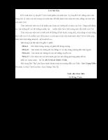 Bài tập lớn môn Lí thuyết Ô tô