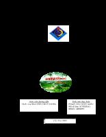 Phân tích hiệu quả hoạt động kinh doanh tại công ty TNHH MTB Thành Phố Cần Thơ.pdf
