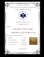 Tìm hiểu công nghệ chế biến gạo ở Việt Nam