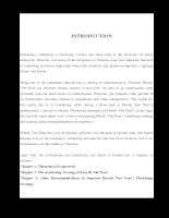 The Marketing Strategy of Ferroli Viet Nam Ltd.doc